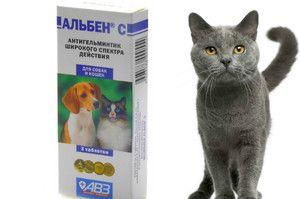 Инструкции за употреба на Албен за кучиња и мачки
