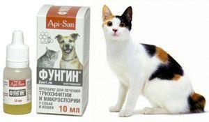 Карактеристики на примената на лекот Фунгин за мачки и кучиња
