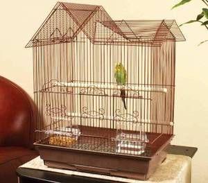 Папагалот во кафез треба да биде удобно