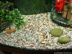 Песочна почва за аквариум