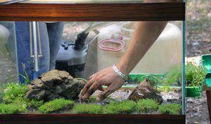 Море песок за аквариум