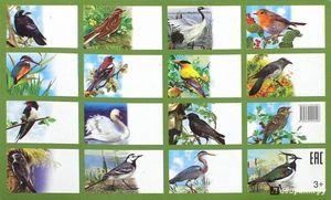 Листа на птици на територијата на Русија