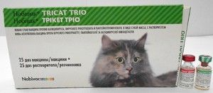 Новивачка вакцина за мачки - упатства за употреба